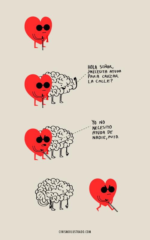 amorciego