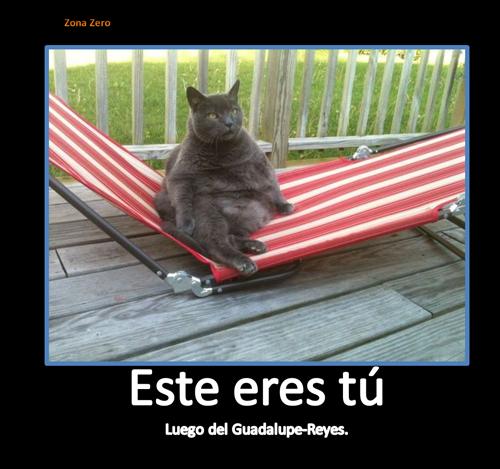 Lupe-Reyes