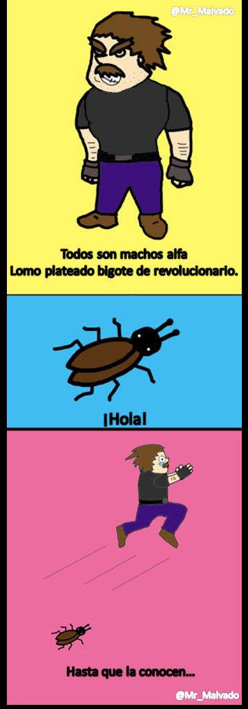 Machooo